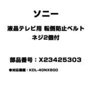 X23425303 [液晶テレビ用 転倒防止ベルト ネジ2個付]