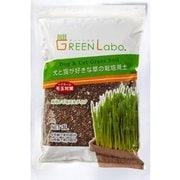 犬と猫が好きな草の栽培用土 3 [猫草]
