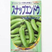 KS100シリーズ(野菜) No.569 スナップエンドウ シュガースナップ