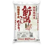 特別栽培米JA越後中央 新潟コシヒカリ 平成28年産 5kg