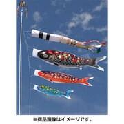 雅 F#300ST [鯉のぼり 庭用 雲龍吹流し付 撥水加工 スタンドガーデンセット(砂袋付)]