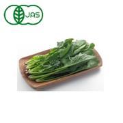 有機農法で作ったほうれん草と旬の野菜の詰め合わせ [茨城県産 有機ほうれん草4,480円セット]