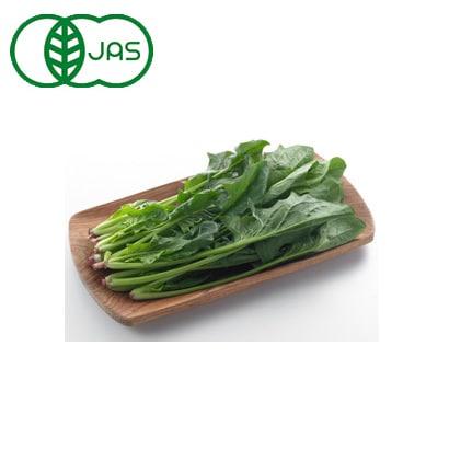 有機農法で作ったほうれん草と旬の野菜の詰め合わせ 5回分回数券 [茨城県産 有機ほうれん草3,480円セット]