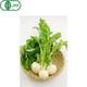 有機農法で作った小かぶと旬の野菜の詰め合わせ(2.2kg) [茨城県産 有機小かぶ2,980円セット]