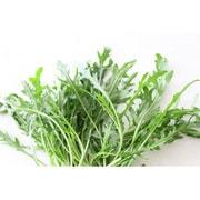 有機農法で作ったセルバチコと旬の野菜の詰め合わせ(0.8kg) 5回分回数券 [茨城県産 有機セルバチコ2,980円セット]