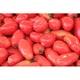 有機農法で作った調理用トマトと旬の野菜の詰め合わせ(2.1kg) [茨城県産 有機調理用トマト2,980円セット]