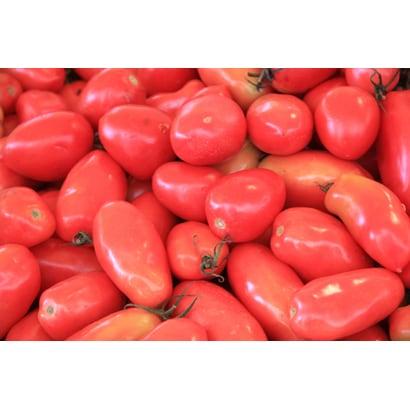 有機農法で作った調理用トマトの詰め合わせ(2.1kg) 5回分回数券 [茨城県産 有機調理用トマト2,980円セット]