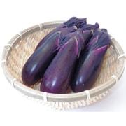 有機農法で作ったなすと旬の野菜の詰め合わせ(3.1kg) [茨城県産 有機なす2,980円セット]