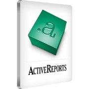 Active Reports for .NET 9.0J STD1 [ライセンスソフト]