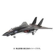 4029 [1/144スケール F-14A ブラックバニー]