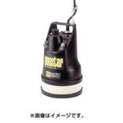 PX525L [ポンスター 低水用 50Hz(東日本地域対応)]