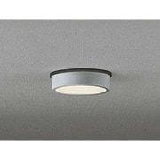 OG254532 [LED アーキモジュール フラットプレート エクステリア 7.5W 防雨型 電球色タイプ マットシルバー]