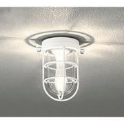 OG254607LD [LED ブラケットライト 4.8W 防雨・防湿型 非調光 電球色タイプ オフホワイト色]