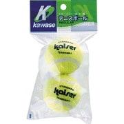 KW-431 [硬式テニスボール2P]