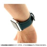 SD6598AW [Apple Watch 42mm用バンド D6 IMBL グリーン]