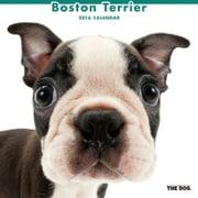 THE DOG カレンダー2016 ボストンテリア [2016年カレンダー 壁掛けタイプ]