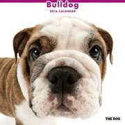 THE DOG カレンダー2016 ブルドッグ [2016年カレンダー 壁掛けタイプ]