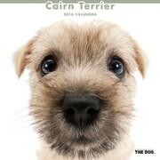 THE DOG カレンダー2016 ケアーンテリア [2016年カレンダー 壁掛けタイプ]