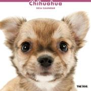THE DOG カレンダー2016 チワワ [2016年カレンダー 壁掛けタイプ]