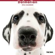 THE DOG カレンダー2016 ダルメシアン [2016年カレンダー 壁掛けタイプ]