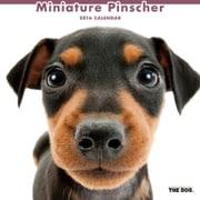 THE DOG カレンダー2016 ミニチュアピンシャー [2016年カレンダー 壁掛けタイプ]