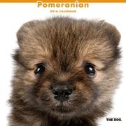 THE DOG カレンダー2016 ポメラニアン [2016年カレンダー 壁掛けタイプ]