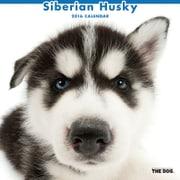 THE DOG カレンダー2016 シベリアンハスキー [2016年カレンダー 壁掛けタイプ]