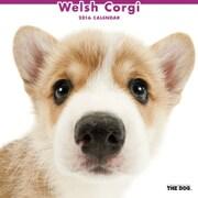 THE DOG カレンダー2016 ウェルシュコーギー [2016年カレンダー 壁掛けタイプ]