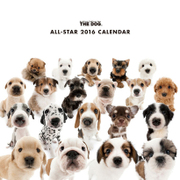 THE DOG カレンダー2016 オールスター [2016年カレンダー 壁掛けタイプ]
