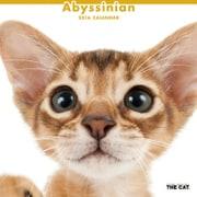 THE CAT カレンダー2016 アビシニアン [2016年カレンダー 壁掛けタイプ]