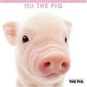 THE PIG ミニカレンダー2016 [2016年カレンダー 壁掛けタイプ]