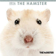 THE HAMSTER ミニカレンダー2016 [2016年カレンダー 壁掛けタイプ]