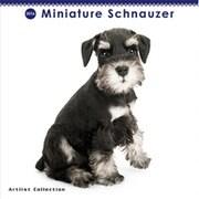 THE DOG ミニカレンダー2016 ミニチュアシュナウザー [2016年カレンダー 壁掛けタイプ]
