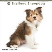 THE DOG ミニカレンダー2016 シェットランドシープドッグ [2016年カレンダー 壁掛けタイプ]