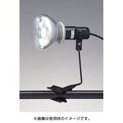 CHL-300PBZ [防雨型ライト 黒]