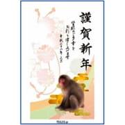 TE620 [2016年 申年 お年玉付年賀はがき4枚 スタンダードカラー]