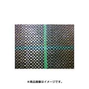BG1515-2×100 [防草シート 2×100m グリーン]