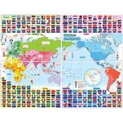 こたえがでてくる! おふろでスタディ 世界地図&国旗 [対象年齢:6歳~]