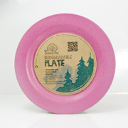 Large Dinner Plate Pink