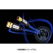 6NUSBGRANDIO2.0-4.0m [USBケーブル A-B 4m]