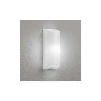 OG254673ND [防雨型 LEDポーチライト 昼白色 FL20W相当]