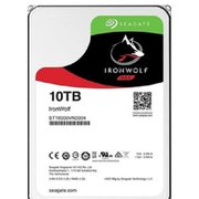 ST10000VN0004 [IronWolf 10TB HDD]
