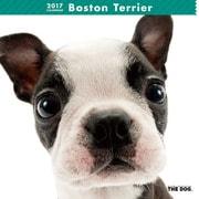 THE DOG カレンダー ボストン テリア [2017年カレンダー]