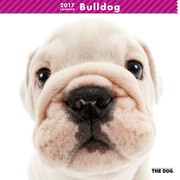 THE DOG カレンダー ブルドッグ [2017年カレンダー]