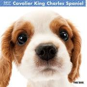 THE DOG カレンダー キャバリア キング チャールズ スパニエル [2017年カレンダー]