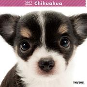 THE DOG カレンダー チワワ [2017年カレンダー]