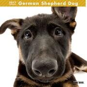 THE DOG カレンダー ジェーマン シェパード ドッグ [2017年カレンダー]