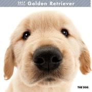 THE DOG カレンダー ゴールデン レトリバー [2017年カレンダー]