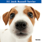 THE DOG カレンダー ジャック ラッセル テリア [2017年カレンダー]