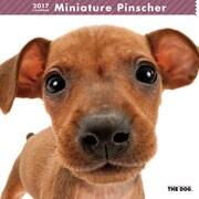 THE DOG カレンダー ミニチュア ピンシャー [2017年カレンダー]